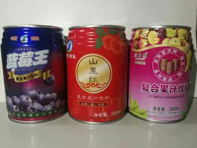 山东省济南市历下区猕猴桃汁 易拉罐 12-18个月