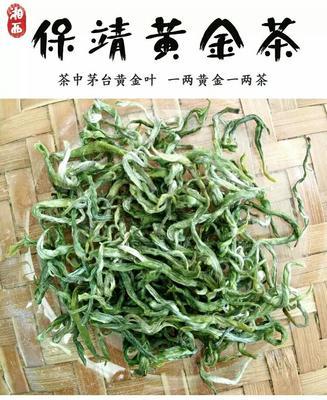 湖南省湘西土家族苗族自治州保靖县湘西保靖黄金茶 一级 罐装