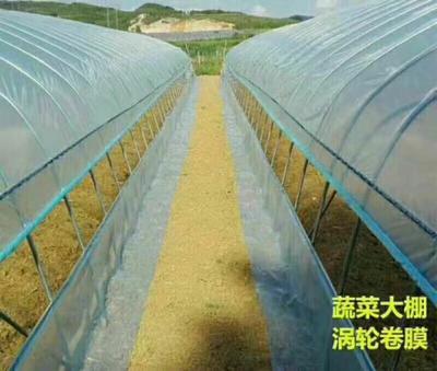江苏省宿迁市沭阳县蔬菜大棚  镀锌钢管大棚质量保证十五年以上