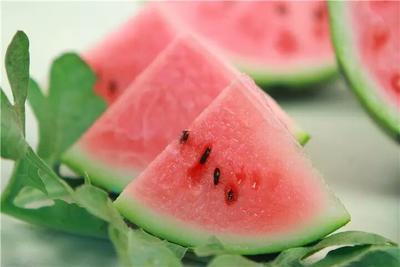 安徽省淮北市相山区8424西瓜 6斤打底 9成熟 1茬 有籽