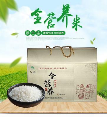 吉林省白城市镇赉县东北大米 一等品 晚稻 粳米