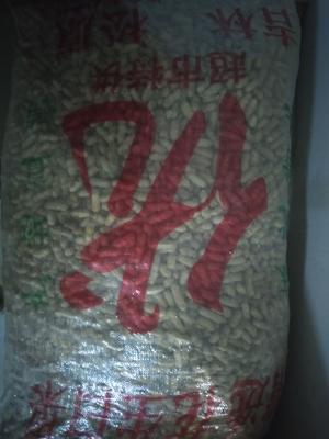 这是一张关于带壳花生 带壳花生 干货 的产品图片