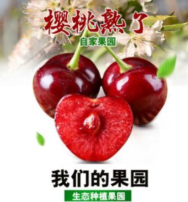 这是一张关于红灯樱桃 26-28mm 15-18g 的产品图片