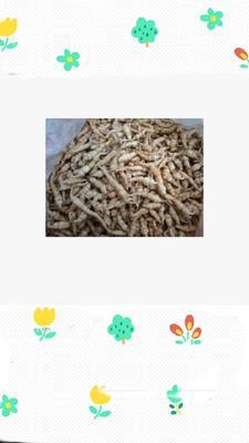 甘肃省兰州市城关区宝塔菜