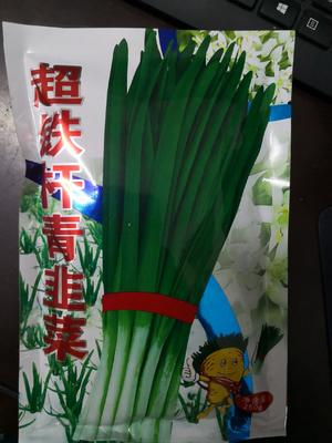 韭菜种子 不休眠    截止6.1  山东农民在本店买货全店8.5折