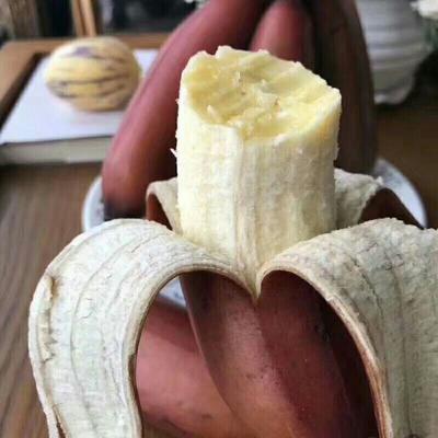 净重5斤装红香蕉红皮香蕉 美人蕉 火龙蕉