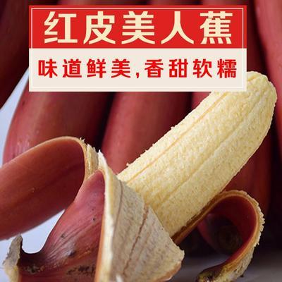 红香蕉 微商专供无催熟剂泡沫箱+真空净重5斤装包邮
