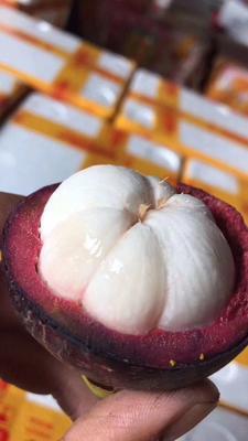 泰国山竹 新鲜水果 产地供应 发货快 五斤装33个左右