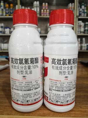 10%高效氯氰菊酯瓜蔬青虫荔枝蝗虫跳蚤杀蚊子苍蝇杀虫剂45