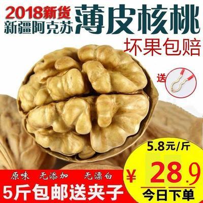【特惠】核桃新疆薄皮核桃五斤包邮