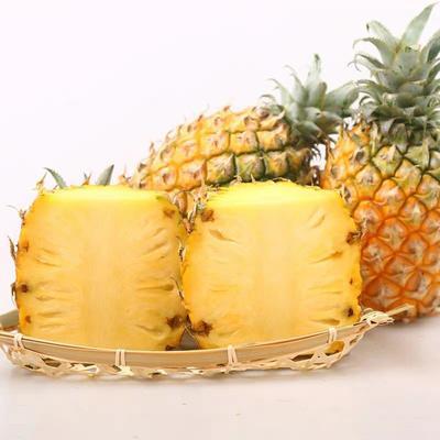 菠萝大香水菠萝包邮!包邮!包邮!