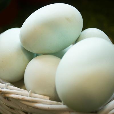 农家咸鸭蛋 厂家直销(100枚装)50g咸鸭蛋