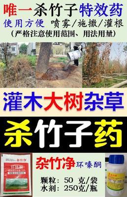 除草剂 1年不长草 杀竹子顽固杂草大树灌木防火坟地公路铁路工厂道路边