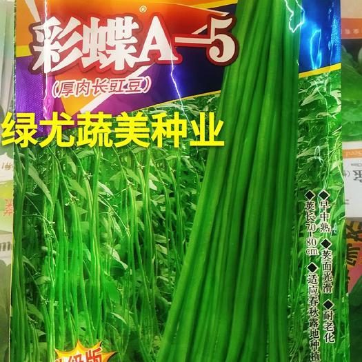 油青豆角种子 200克装翠绿油亮,特耐热耐湿,豆角顺直,厚肉,头尾圆钝。