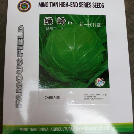 绿甘蓝种子 高圆绿甘蓝品种  春夏秋可种