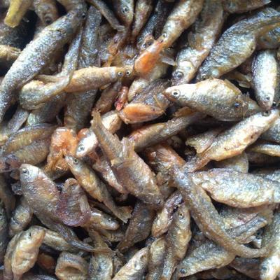 小鱼干 油炸麦穗鱼干嫩子鱼