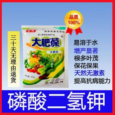 磷酸二氢钾,根多叶茂,天然无激-素,保花保果,提高抗病能力