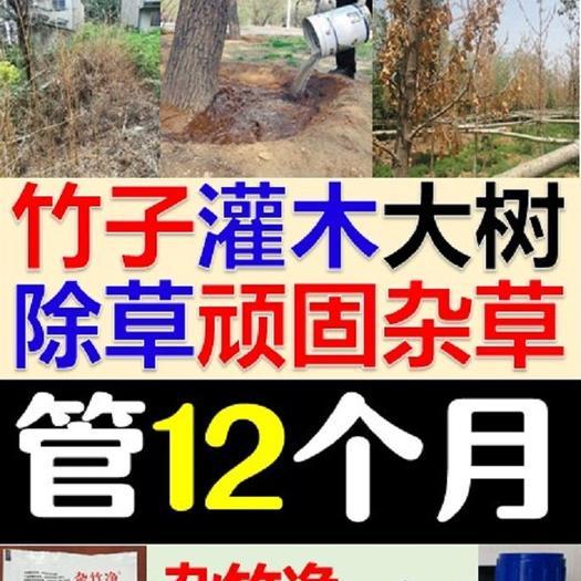 1年不长草杀竹子药顽固杂草大树灌木小树除草剂彻底烂根死根