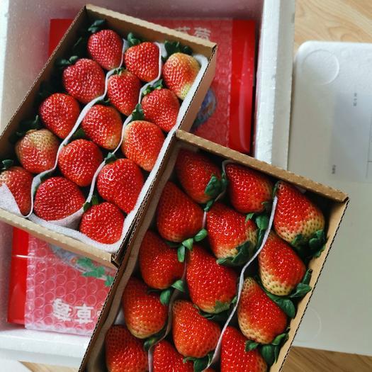 基地直发,支持一件代发,365天供应新鲜草莓,
