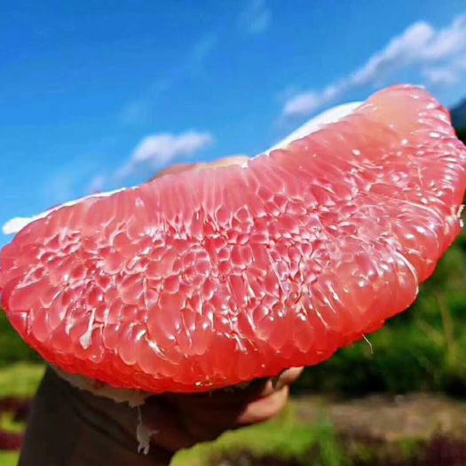 红心柚50斤一袋大果包邮一件代发