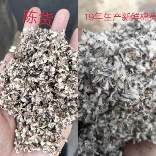 棉籽壳 17年陈货上车720元/吨无结块霉变水份8个不是每年都有抓紧