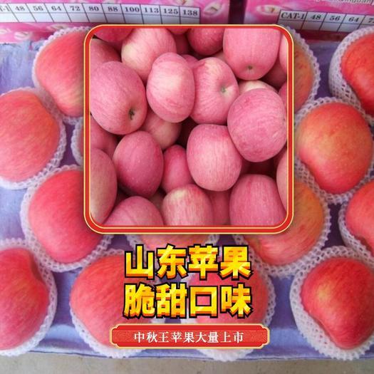 山东红富士苹果批发!红将军苹果供应!基地直销