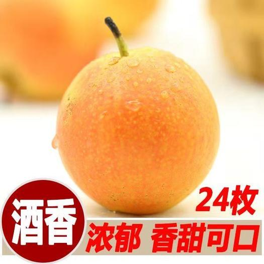 鞍山南果梨礼盒24/玫~包邮 香浓汁多 果肉细腻 梨中皇后