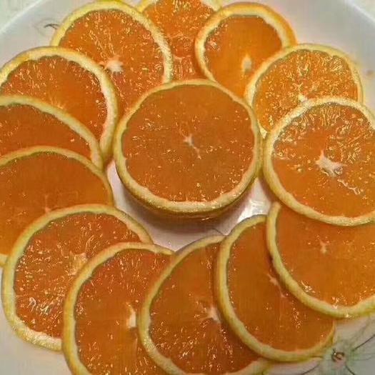 秭归脐橙,大山里的货,皮薄,水份好,欢迎咨询