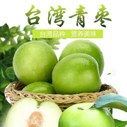 台湾大青枣苗 南北均可种植 保证品种纯度 包成活 基地自产自销 牛奶味
