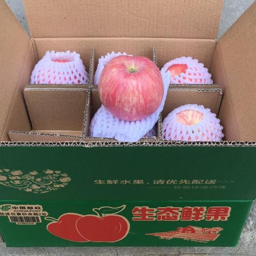 红富士苹果包邮    不甜包赔  坏果包赔