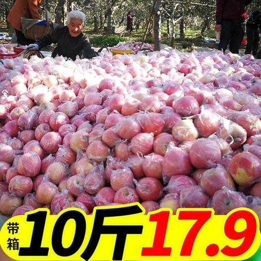 陕西红富士苹果新鲜现摘当季孕妇水果脆甜多汁10斤包邮