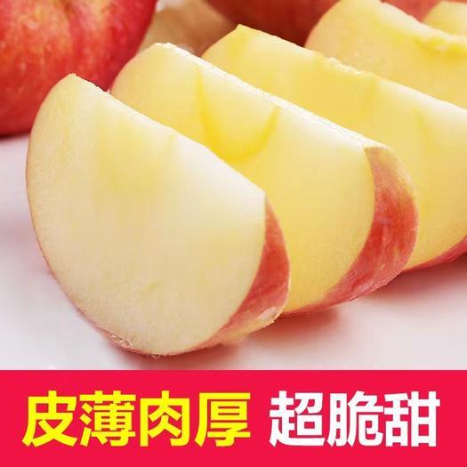 【包邮】山西红富士苹果水果新鲜当季脆甜丑苹果5/10斤起拍