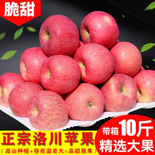 【正常发货】现摘水果红富士苹果新鲜当季批发包邮一整带箱10