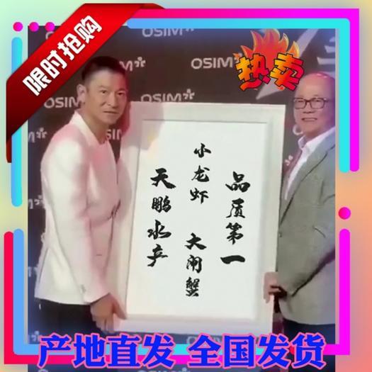 阳澄湖镇镇大闸蟹  精品推荐卌卌兴化大闸蟹卌卌产地直发 一手货源