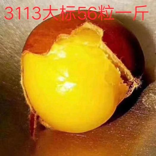 迁西板栗  2020河北3113【炒栗店专用货】可发5斤试炒