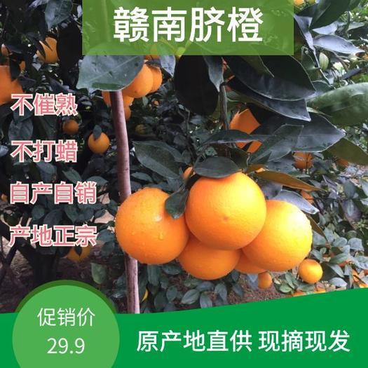 赣州赣南脐橙水果新鲜当季整箱橙子10斤应季正宗江西手剥橙