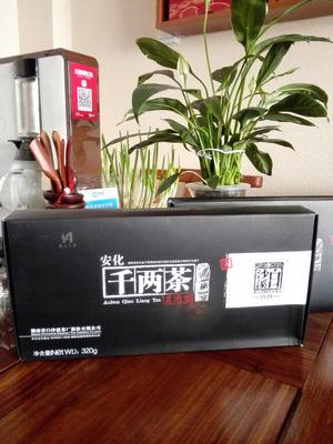 山东省滨州市滨城区千两茶 盒装 二级