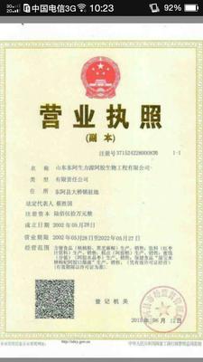 山东潍坊安丘市阿胶糕 6-12个月