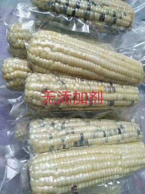 黑龙江省哈尔滨市木兰县粘玉米