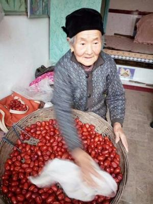 陕西榆林绥德县红拐枣