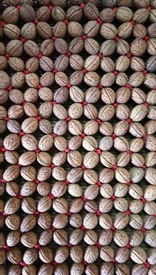 陕西省铜川市耀州区桃核 24个月以上 包装