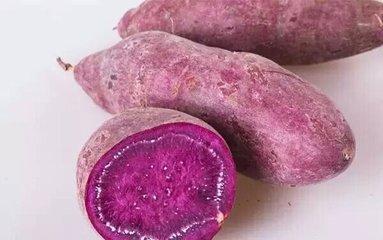 山东枣庄峄城区济薯18号 3两以上