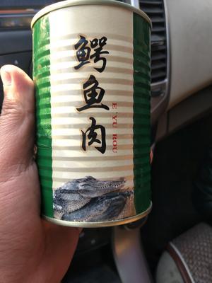 山东省菏泽市郓城县鳄鱼罐头 24个月以上