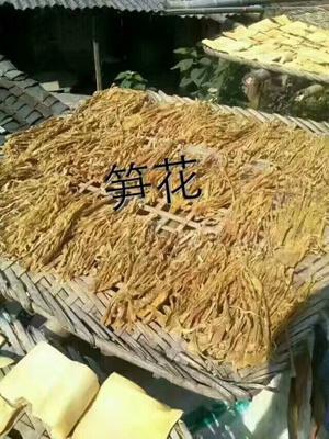 广东韶关乳源瑶族自治县麻竹笋干 散装 1年以上