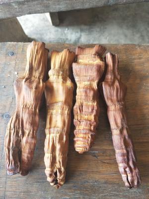 云南思茅孟连傣族拉祜族佤族自治县烟笋干 袋装 半年