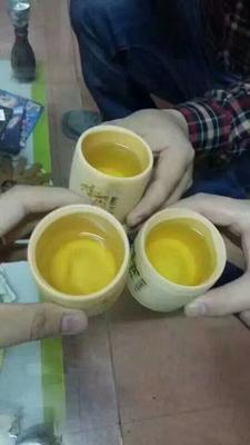 安徽宣城广德县竹筒酒 40-49度
