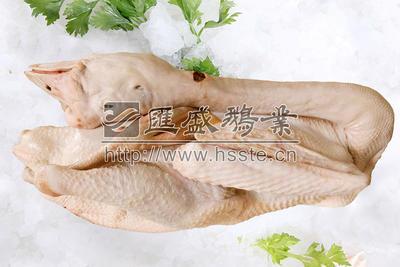 广东省揭阳市榕城区冰鲜狮头鹅 冷冻