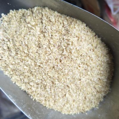 山东枣庄滕州市小麦胚芽