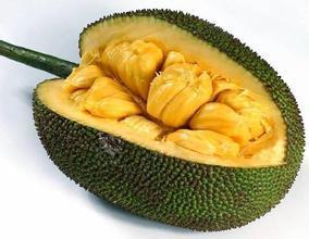 江苏苏州张家港市泰国菠萝蜜 10-15斤