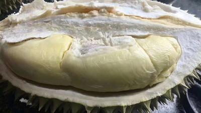 广西崇左凭祥市猫山王榴莲 40 - 50%以上 2公斤以下